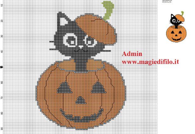 black_cat_in_halloween_pumpkin
